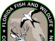 Florida Fish And Wildlife Conservation